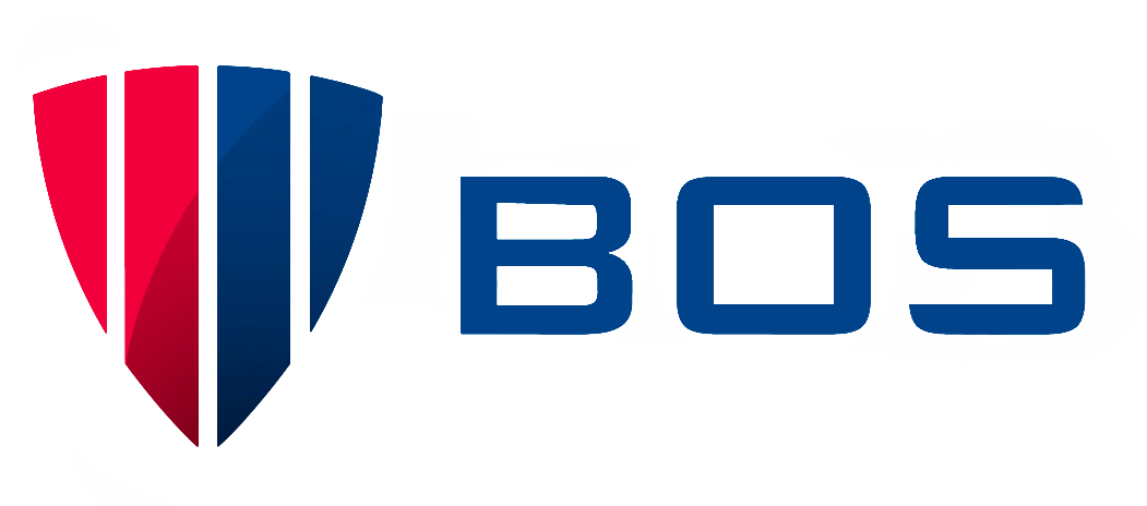 logo borinato security